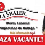 KOLA SHALER