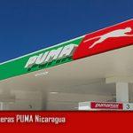 PUMA COUNTRY